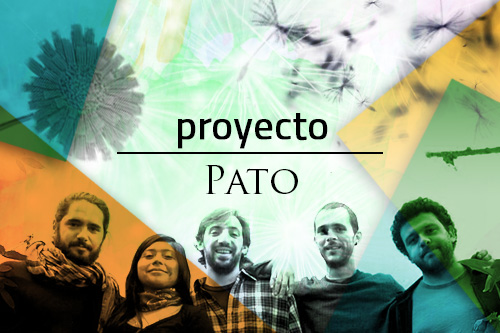 Proyecto Pato